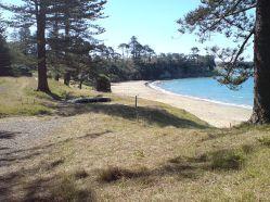 640px-Motuihe_Island,_Northern_Beach_West