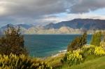 Blick auf den Lake Hawea