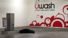 seal car wash