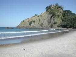 New_Chums_Beach By Pseudopanax