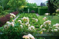 knot-garden