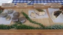 opawa-cheese