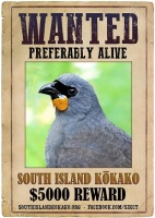 four_col_si_kokako_wanted_poster-__original_image_of_ni_kokako_by_tara_swan__creative_touches_by_oscar_thomas_and_geoff_reid